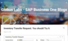 Globus Labs - SAP Business One Blogs