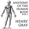 Anatomy of the Human Body, Part 2 by Henry Gray
