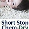 Short Stop Chem-Dry » Carpet Cleaning
