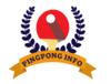 Pingpong Info