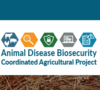 Animal Disease Biosecurity Coordinated Agricultural Project