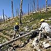 Wilderness Volunteers Blog