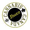 Cannabis Canada Buzz