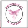 Endodontics in Cranberry