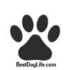 Best Dog Life