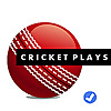 Cricket Plays