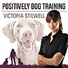 Positively Dog Training | The Official Victoria Stilwell Podcast