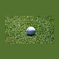 Golfing Revolution