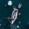 Alluring Arctic