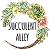 Succulent Alley