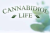 Cannabidiol Life