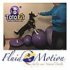 Fluid Motion Blog