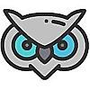 Football Owl