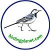 Birding Planet