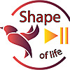 shape of cooking