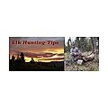 Elk Hunting Tips Blog