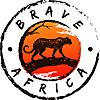 Brave Africa Blog