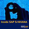 Inside SAP S/4HANA