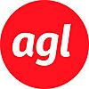 Agile Government Leadership
