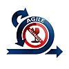 Agile No Fragile