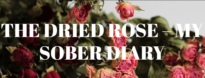 The Dried Rose | My Sober Diary