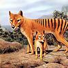 Extinction Blog