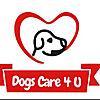 Dogs care 4u