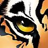 TigerTMS