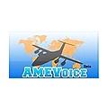 AMEVoice