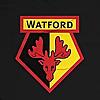 Watford Football Club | Official Website