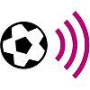 FootballFanCast.com » West Brom News