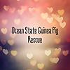 Ocean State Guinea Pig Rescue Fusaro Farm