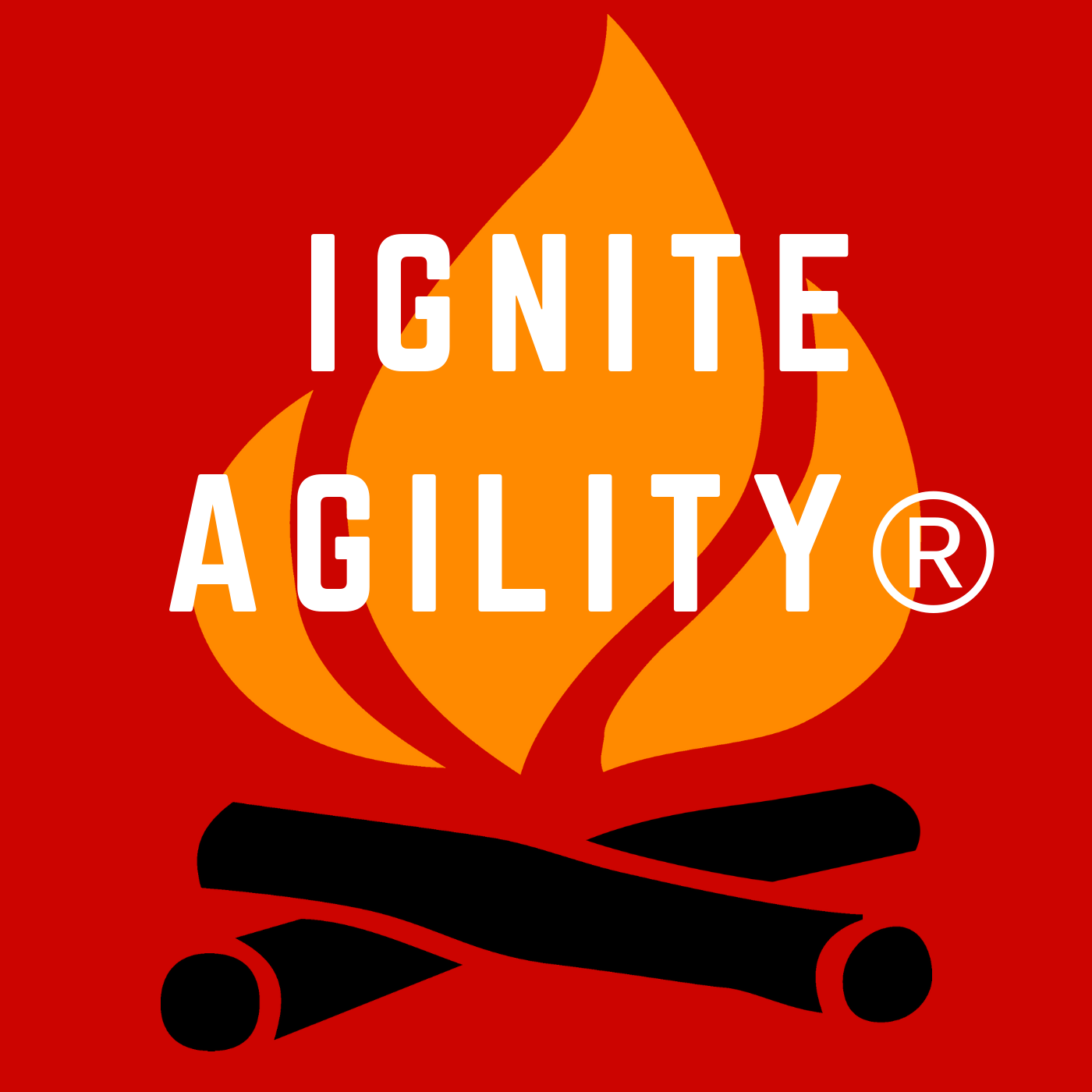 Ignite Agility Podcast