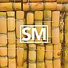 Sugarcane Magazine | Black Art and Culture