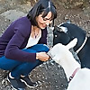 Animal Human Health Connection
