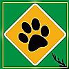 The Wildlife India