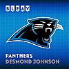 Bleav in Carolina Panthers