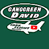 GangGreen David