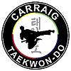 Talking Taekwon-Do