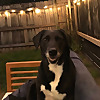 Targeting | College Football Podcast