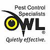 Owl Pest Control