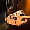String Bass - Sheet Music