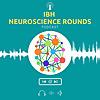 IBH Neuroscience Rounds
