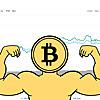 Crypto News Exchange