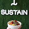 The Sustainabowl