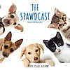 The Spawdcast
