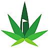 Cannabis Buzz