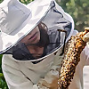 Bee & Bloom Blog