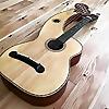 Harpguitar | Gregg's Blogg